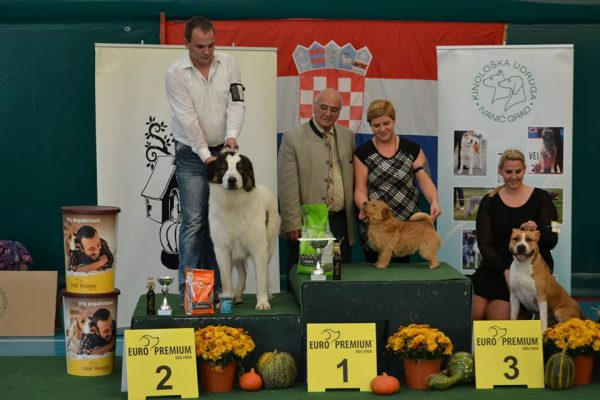 Speciality show for 2 and 3 group Ivanić Grad